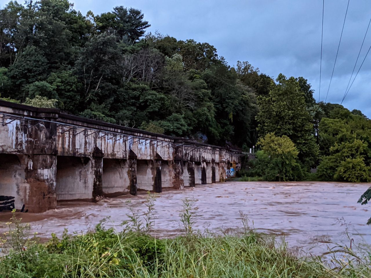 French Broad river, surrounded by greenery, with a bridge crossing over. River is flooding.